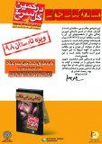 همراه با شهید صیاد شیرازی در تابستان / مسابقه کتابخوانی «در کمین گل سرخ»